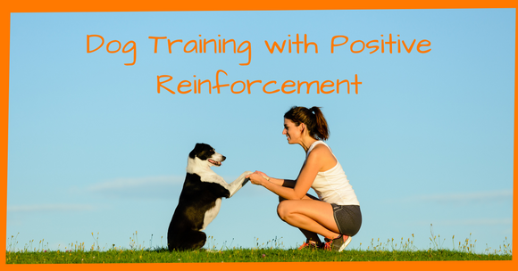 Dog Training with Positive Reinforcement