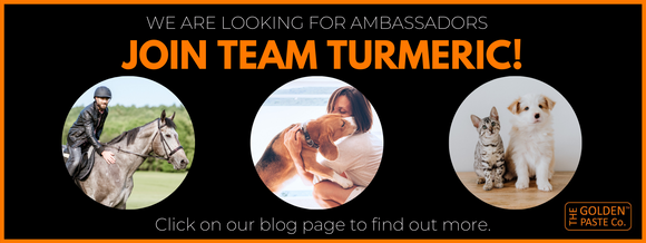 Become a brand ambassador and join Team Turmeric!