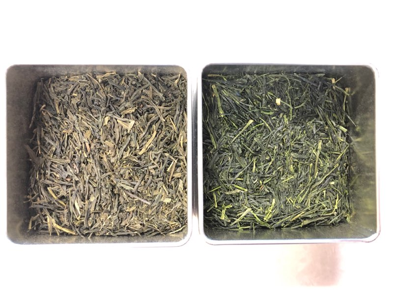 Are Japanese Green Teas High Maintenance?