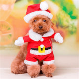 Pet Costume Cowboy, Pirate, Policeman, Superman and Santa Claus Costume Purrrfect for Pets