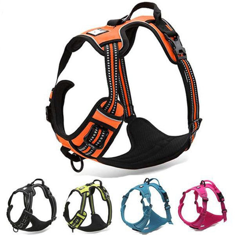 Front Range No-Pull 3M Reflective Dog Harness. - Purrrfect For Pets