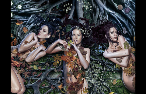 Charmed - Witch Roots - high quality 11 x 17 digital print