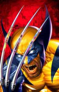 Wolverine - Claw Reflections