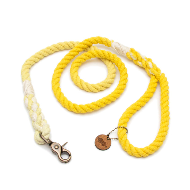 Sunshine Ombre Rope Leash