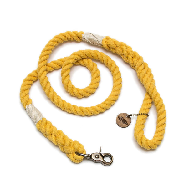 Gold Wayfarer Leash-Rope Dog Leash-Green Trout Outfitters-Handmade-Eco Friendly-Dog Leash