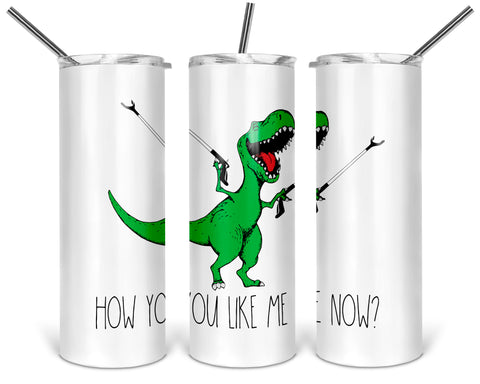 How You Like Me Now Funny T-Rex 20oz Stainless Steel Tumbler with Lid, Green Dinosaur with Reachers