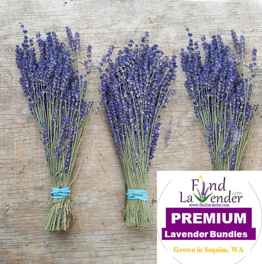 "Culinary Lavender Bundles - 14"" - 18"" Long - Findlavender"
