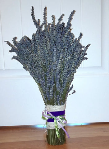 "Jumbo Lavender Bundle- 22"" Tall"