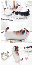 Trousse Chat Kawaii 3D