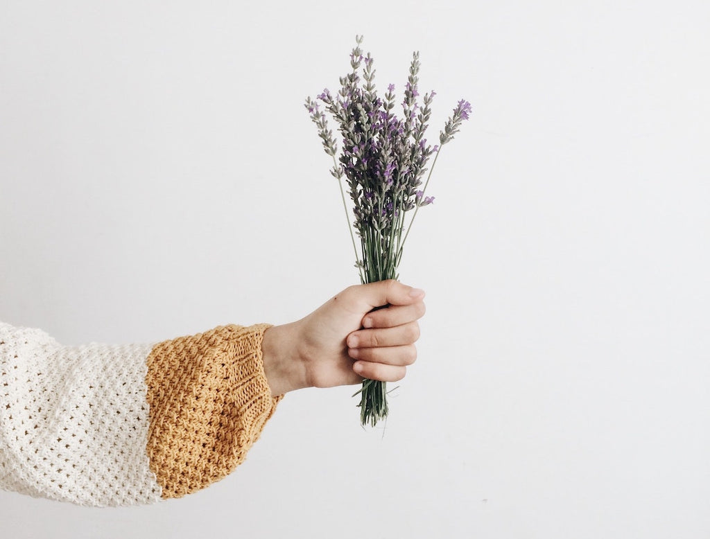 The UMA Oils Files: Lavender 101