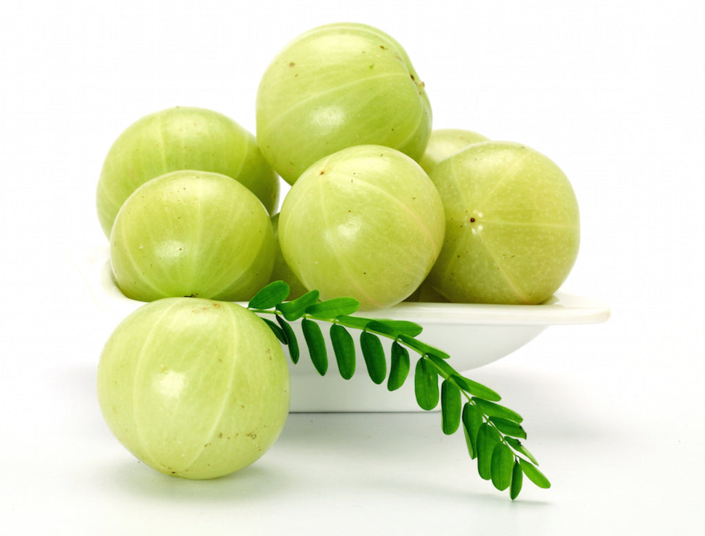 The UMA Oil Files: Indian Gooseberry Oil 101