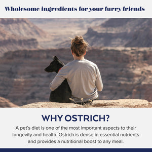 infographic that reads: Ostrich is dense in essential nutrients and provides a nutritional boost to any meal