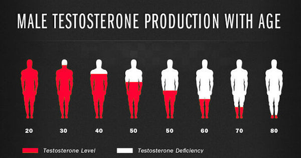 stop production of Testosterone