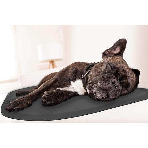 "Image of WellnessMats PetMat SM Rounded 27"" X 18"" X 1"" PM2718RGRY,GrayCloud"