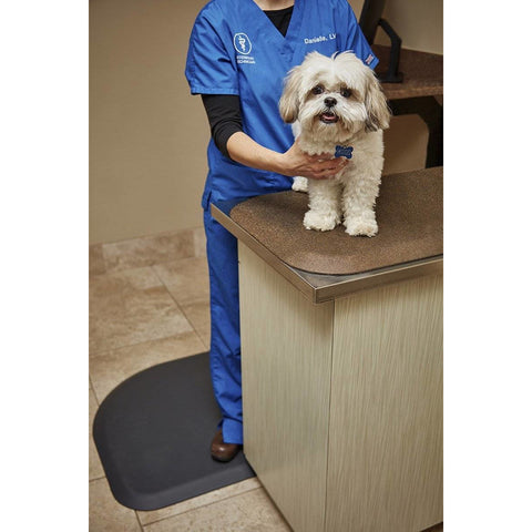 "Image of WellnessMats PetMat SM Squared 28"" X 17"" X 1"" PM2817SGC,GoldenRetreat"