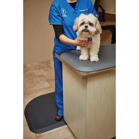 "Image of WellnessMats PetMat SM Squared 28"" X 17"" X 1"" PM2817SGRY,Gray Cloud"