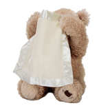 Buy Peek a Boo Plush Bear Teddy