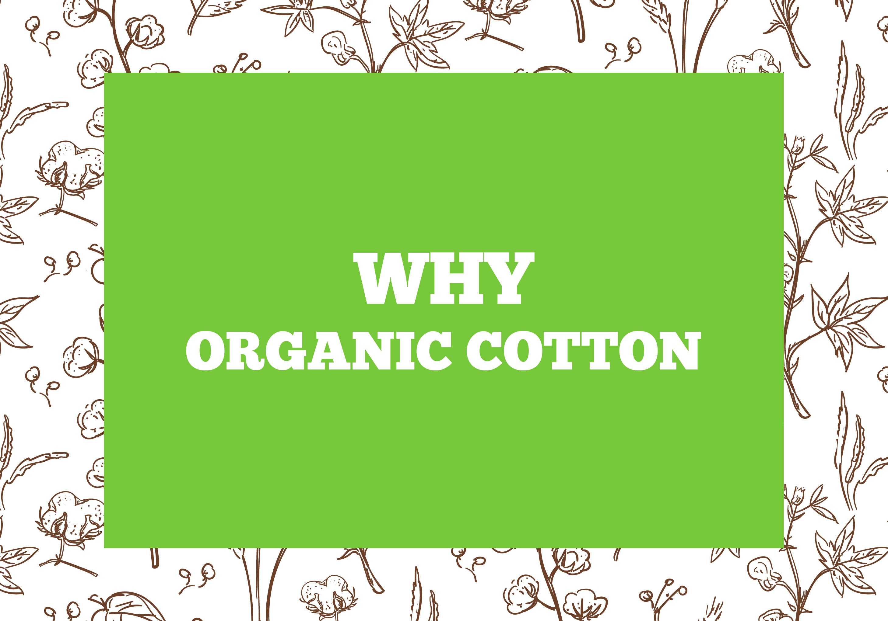 Why Organic Cotton