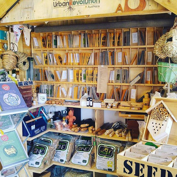 Seeds and Growing Kits - Bring Your Garden to Life