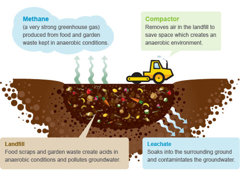 Organic waste in landfill diagram showing how food scraps in landfill produce greenhouse gases