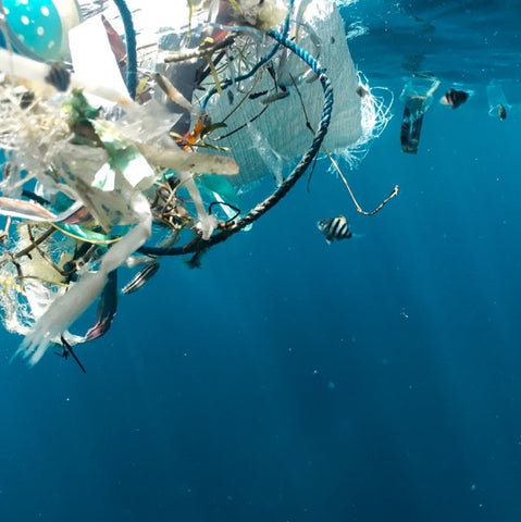 Plastic pollution floating in the ocean