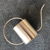 Stainless Steel Watering Can - 1.5 L