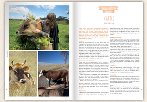 Pip Magazine - Issue 11 - The Cow Issue