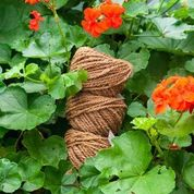 Three Balls of Araliya String in Natural Colourway, in a Garden