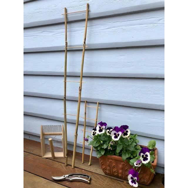 Bamboo Ladder Trellis in Smaller Size