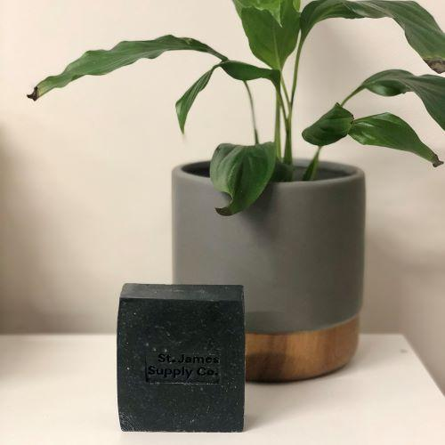 Charcoal Facial Cleansing Bar from St James Supply Co, with a Potted Plant