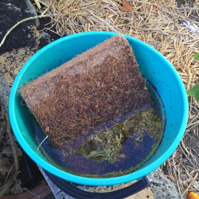 Square Coir Fibre Planter Bag With Coir Block