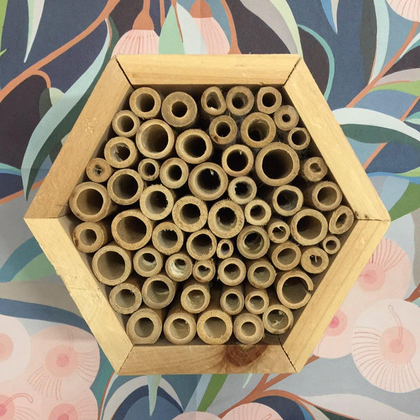 Hexagonal Insect Hotel with Bamboo Tubes - Front view