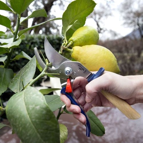 Hand Pruner Secateurs, from Opinel (Slate)