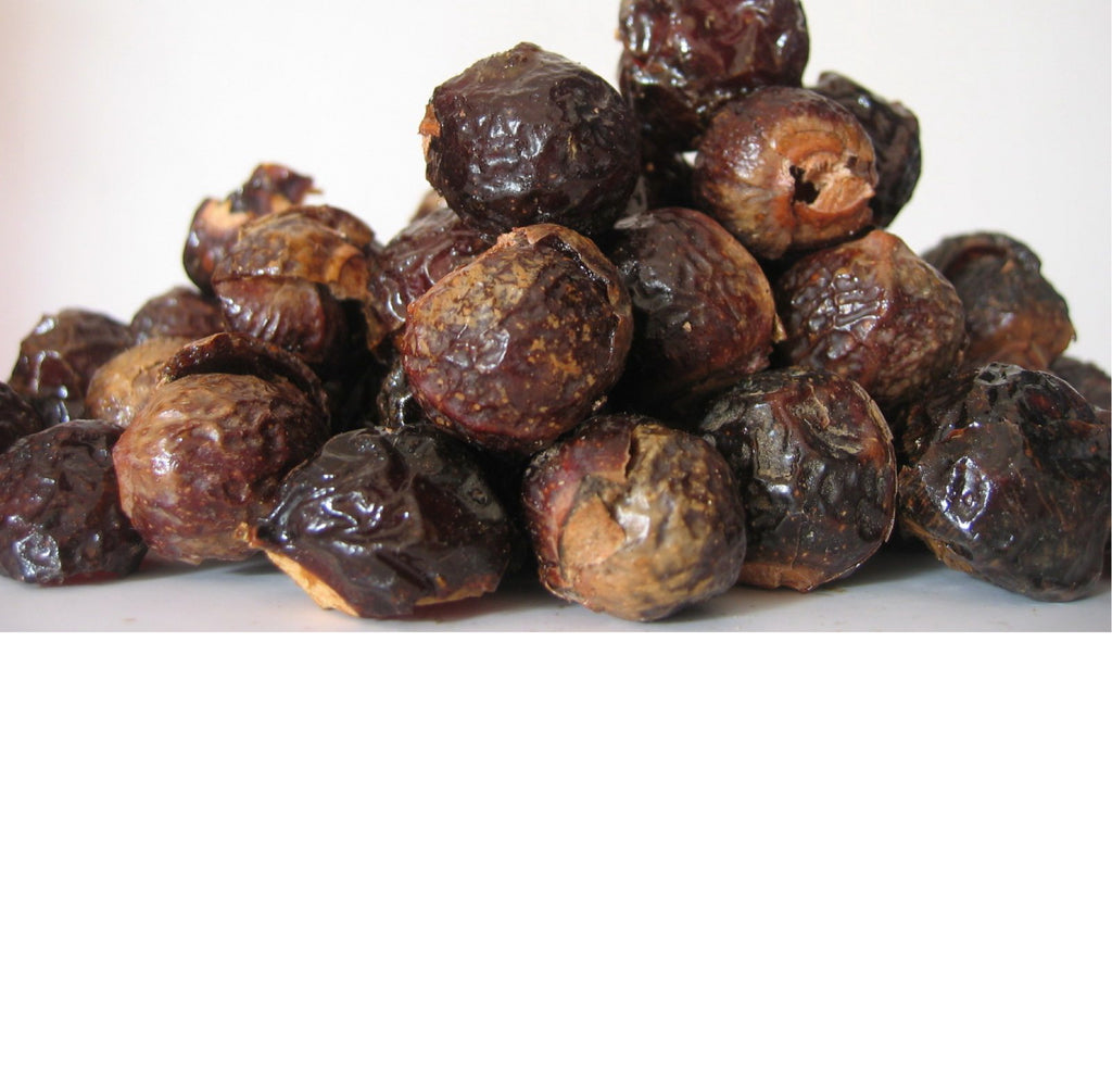 Soap Nuts (Berries) In Bulk - Per 100 Grams
