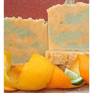 The Family Hub Organic Soap - The Family Hub Home Twisted Citrus