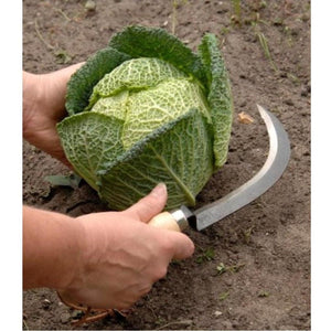 Urban Revolution Australia Vegetable Harvesting Knife Garden