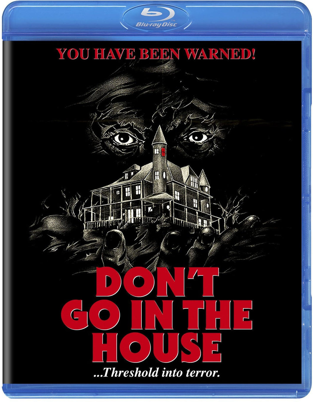 Don't Go in the House (Blu-ray): Ronin Flix
