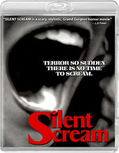 Silent Scream (Blu-ray): Ronin Flix - Reversible Cover
