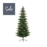 Queensland Slim Fir - 7ft