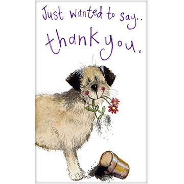 Border Dog Thank Yous - Pack of 5 Cards