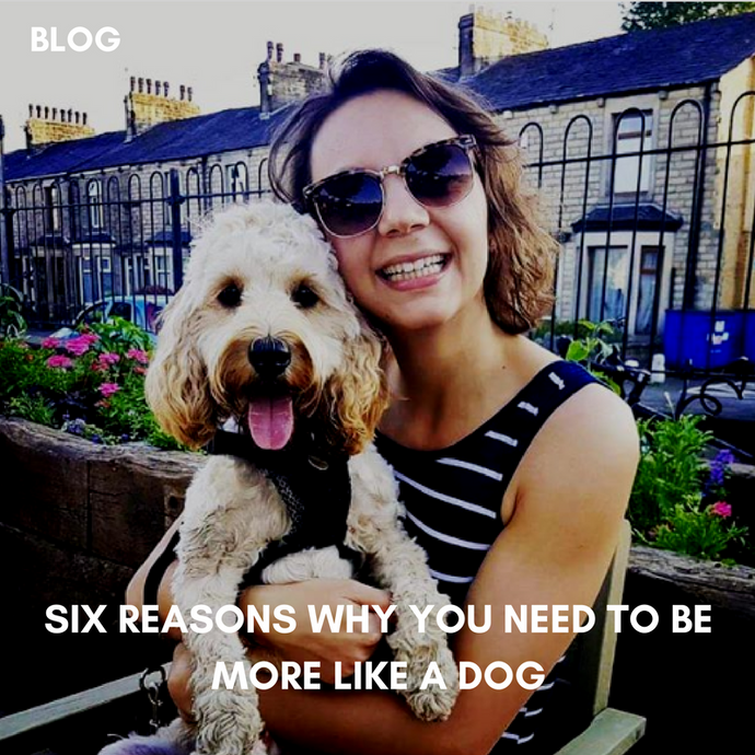 Six Reasons Why You Should Be More Like A Dog