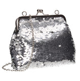 Britney  Clutch Bag Silver Beautiful Clutch Bag Perfect for any occasion