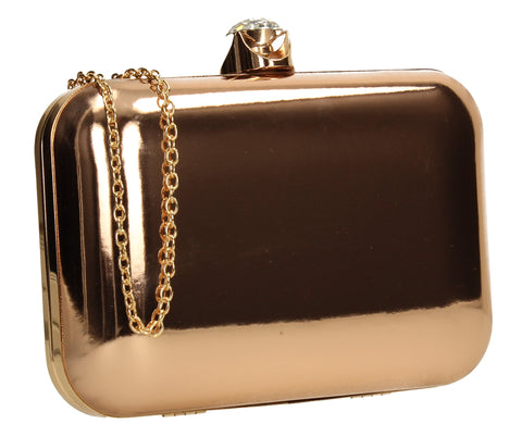 SWANKYSWANS Camilla Box Clutch Champagne Cute Cheap Clutch Bag For Weddings School and Work