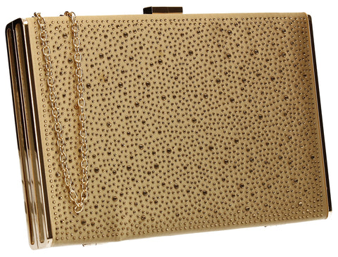 Shanina Clutch Bag Gold-Clutch Bag-SWANKYSWANS