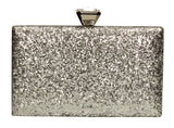 Lyana Clutch Bag Silver