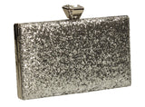 SWANKYSWANS Lyana Clutch Bag Silver Cute Cheap Clutch Bag For Weddings School and Work