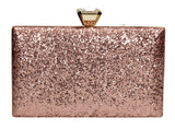 Lyana Clutch Bag Champagne