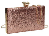 SwankySwans Lyana Clutch Bag Champagne Box shape Clutch Bag Glitter  Metallics Minaudière Party Wedding