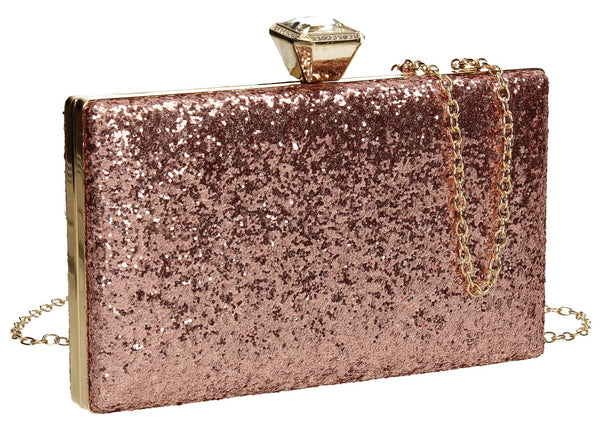 SWANKYSWANS Lyana Clutch Bag Champagne Cute Cheap Clutch Bag For Weddings School and Work