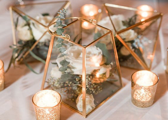 Our geometric terrarium style in weddings and venues with its glass ... Explore our terrarium collection for your home, event or venue designs.  We have a wide range of terrarium glass geometric in Design & Craft in Singapore. Largest number of instock go
